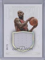 LeBron James /75
