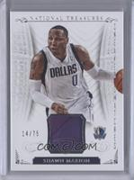Shawn Marion /75