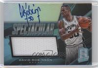 David Robinson /20