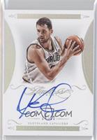 Kevin Love /20