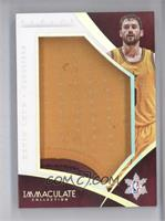 Kevin Love /18