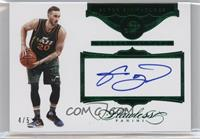 Gordon Hayward /5