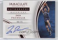 Zaza Pachulia #6/25