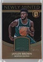 Jaylen Brown /15