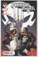Witchblade/Punisher