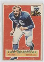 Joe Schmidt