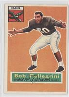 Bob Pellegrini