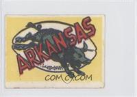 Arkansas Razorbacks Team
