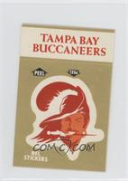 Tampa Bay Buccaneers Team