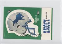 Detroit Lions (Helmet)