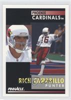 Rich Camarillo