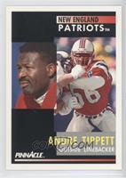 Andre Tippett