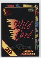Wild Card #1