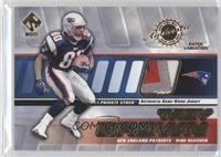 Troy Brown /350