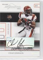 Chad Johnson /216