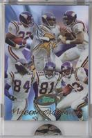 Minnesota Vikings Team