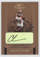 Chad Johnson /75