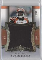 Chad Johnson /30