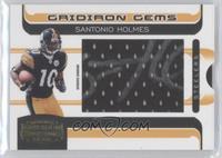 Santonio Holmes /150