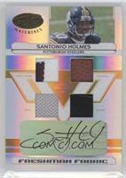 Santonio Holmes /25
