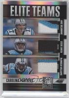 Jake Delhomme, DeAngelo Williams, Steve Smith /25