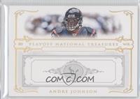 Andre Johnson /5