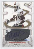 Brandon Meriweather /100