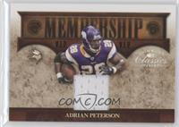 Adrian Peterson /250