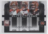 Carson Palmer, Chad Johnson, T.J. Houshmandzadeh /800