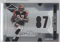 Andre Caldwell /49