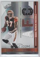 Andre Caldwell /199