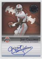 Joey Galloway /153