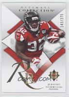 Jerious Norwood /275