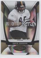 David Johnson /25