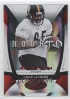 David Johnson /250