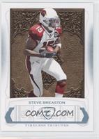 Steve Breaston /25