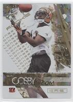 Quan Cosby /49