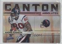 Andre Johnson /25