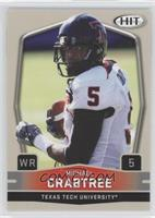 Michael Crabtree (Arms Down)