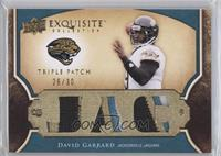 David Garrard /30