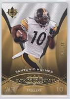 Santonio Holmes /375