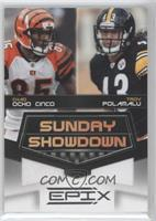 Chad Ocho Cinco, Troy Polamalu /200