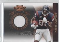 Andre Johnson /299