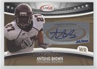 Antonio Brown /200