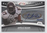 Antonio Brown /400