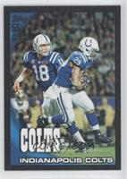 Indianapolis Colts Team /55