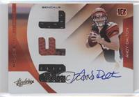 Rookie Premiere Materials NFL Signatures - Andy Dalton /299