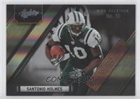 Santonio Holmes /100