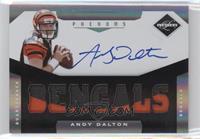 Andy Dalton /299