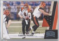 Carson Palmer /99